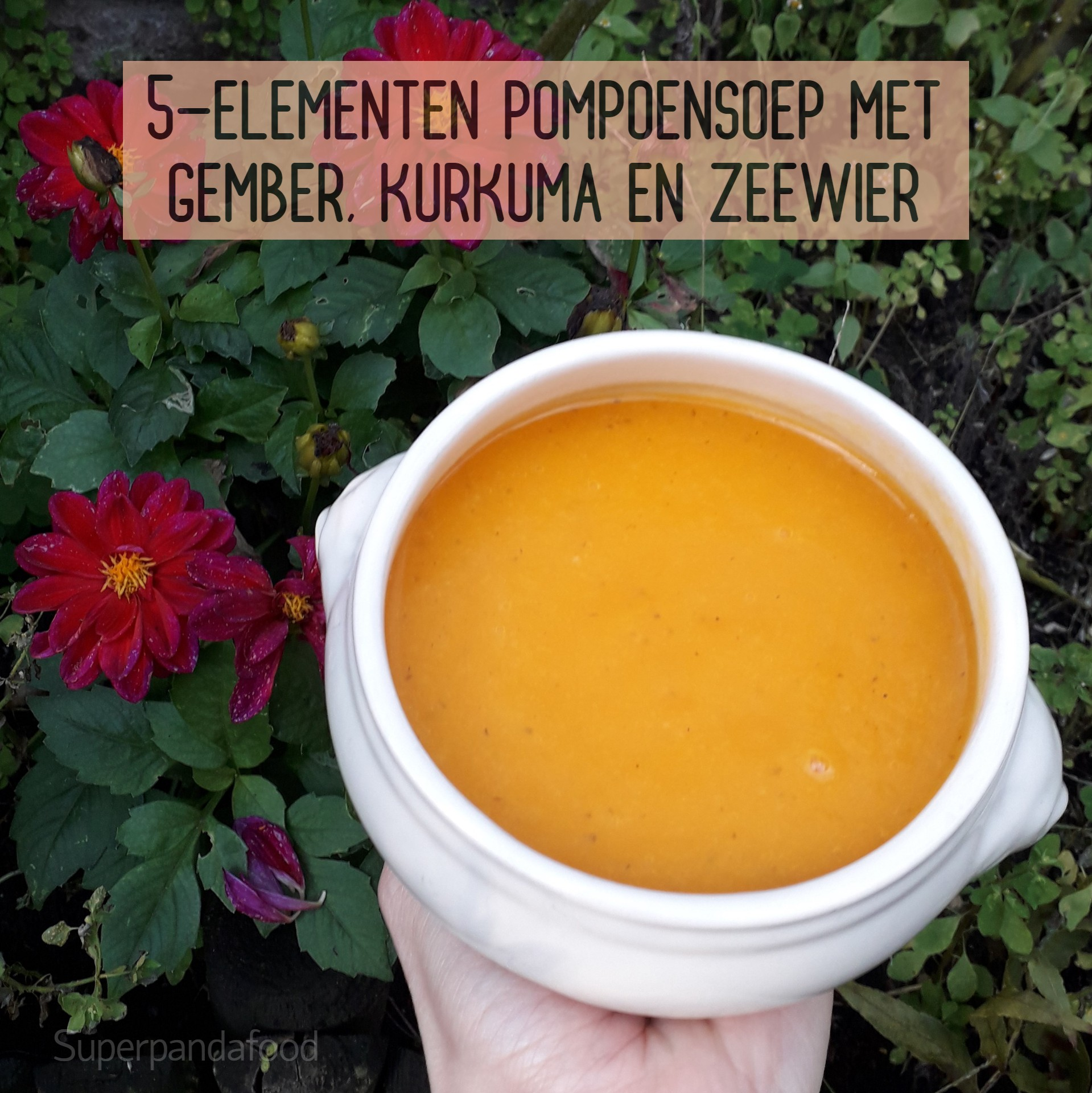 5-elementen pompoensoep met gember, kurkuma en zeewier - Vegan, glutenvrij en lactosevrij