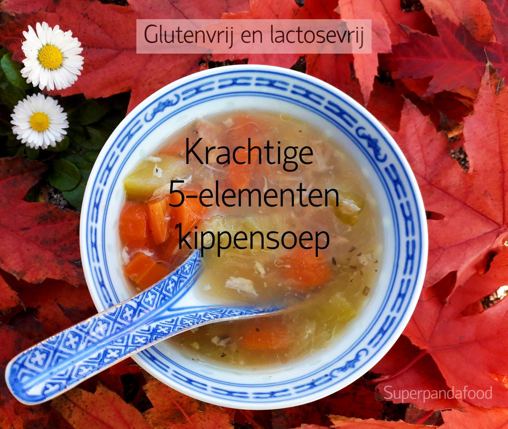 Krachtige 5-elementen kippensoep - glutenvrij en lactosevrij recept