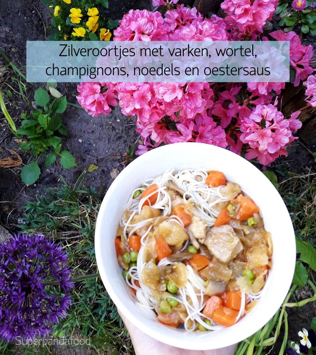 Zilveroortjes met varken, wortel, champignons, noedels en oestersaus - Glutenvrij en lactosevrij - 5-elementen-koken